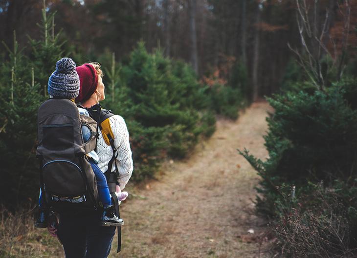 ¿Cuáles son las mejores excursiones para hacer con niños?