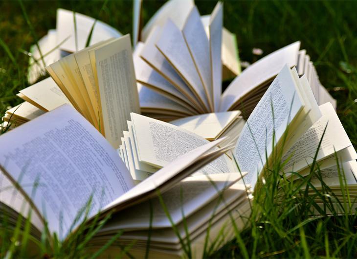 """Lecturas de verano: los libros """"eco"""" para toda la familia"""